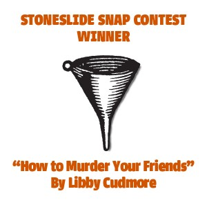 And the Winner of the Stoneslide Snap Contest Is…
