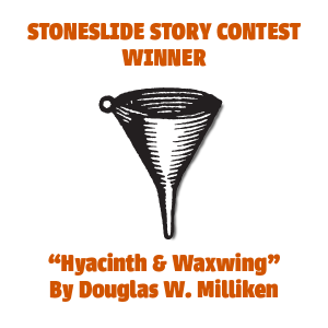 Stoneslide Story Contest 2015: The Results